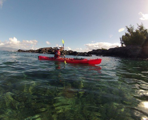 Honolua Red Kayaking Tours