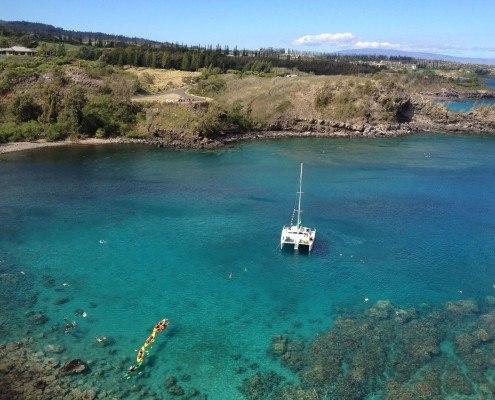 Honolua Kayak Snorkel Turtle Maui