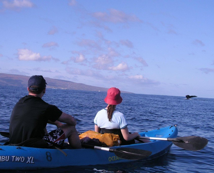 Blue Kayak & Whale Tail