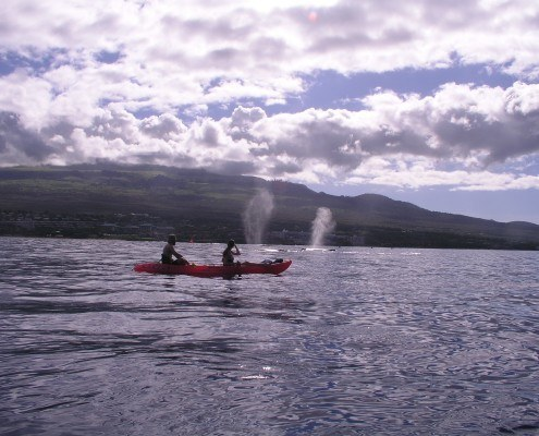 Red Kayak Two Whale Spouts