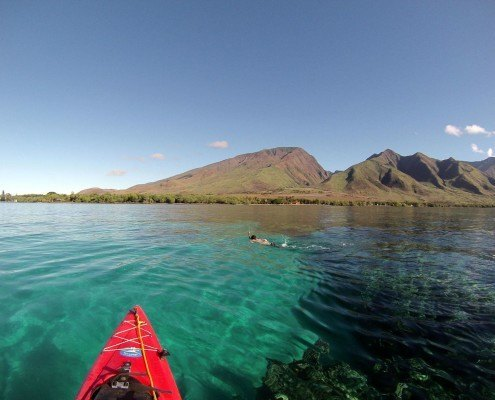 Olowalu Snorkeling Tour