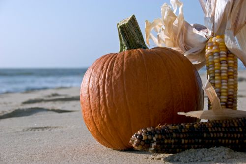 Pumpkin on beach