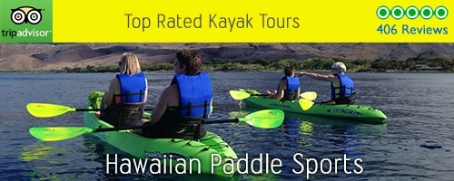 Hawaiian Paddle Sports Kayak Tour