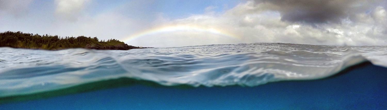 Honolua Marine Preserve