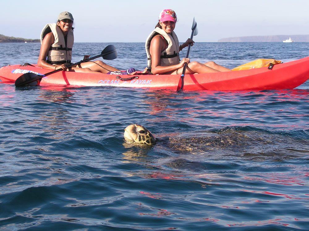Makena Kayak Turtle Tour