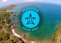 Makena Turtle Town Tour