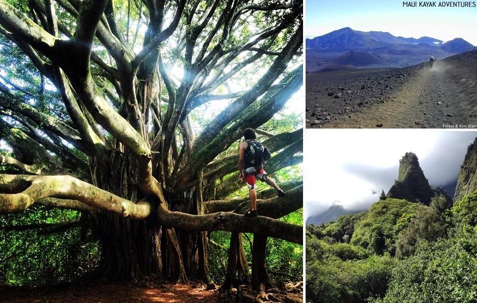 hiking in maui