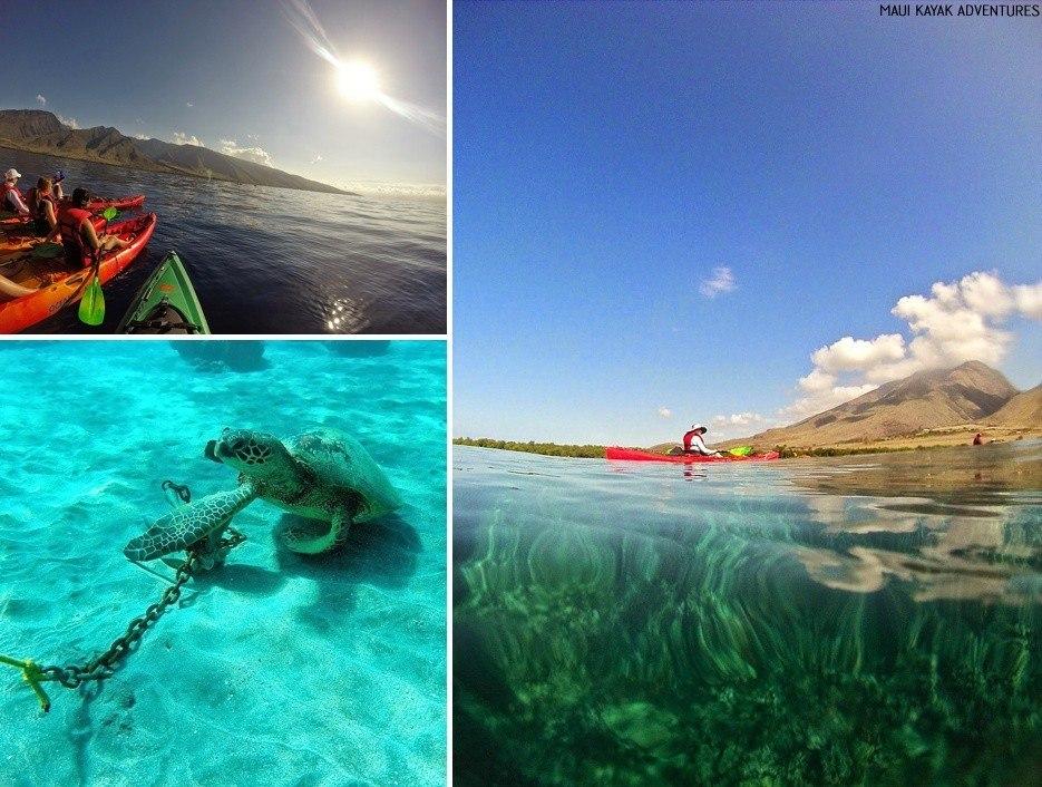 best kayak tours maui