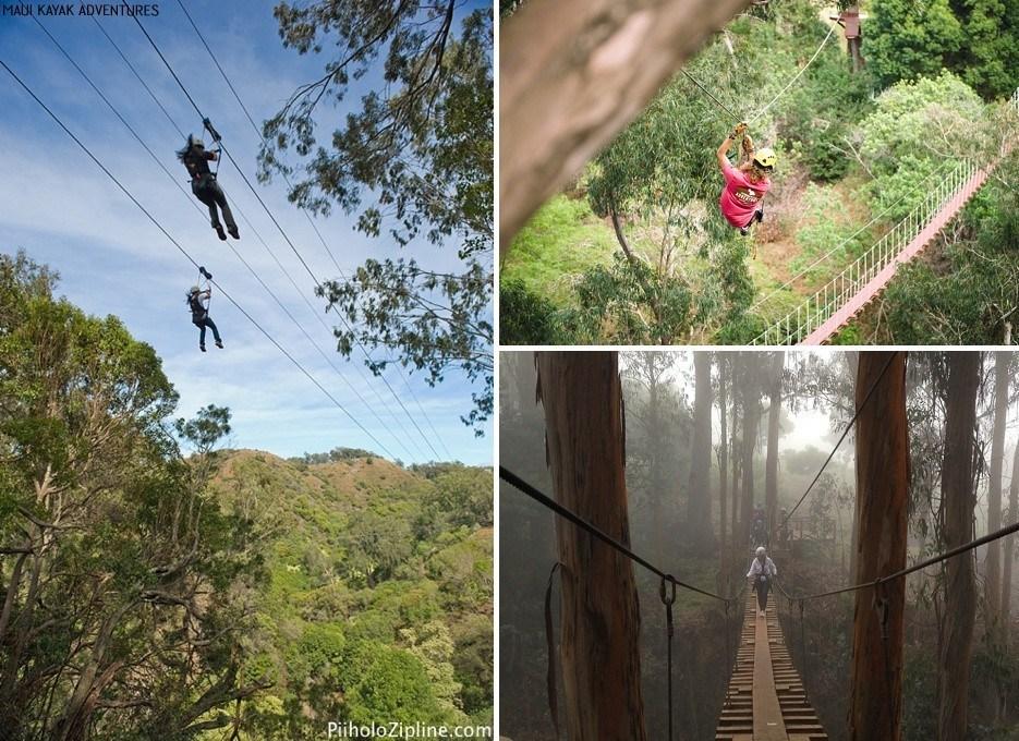 ziplining tours maui
