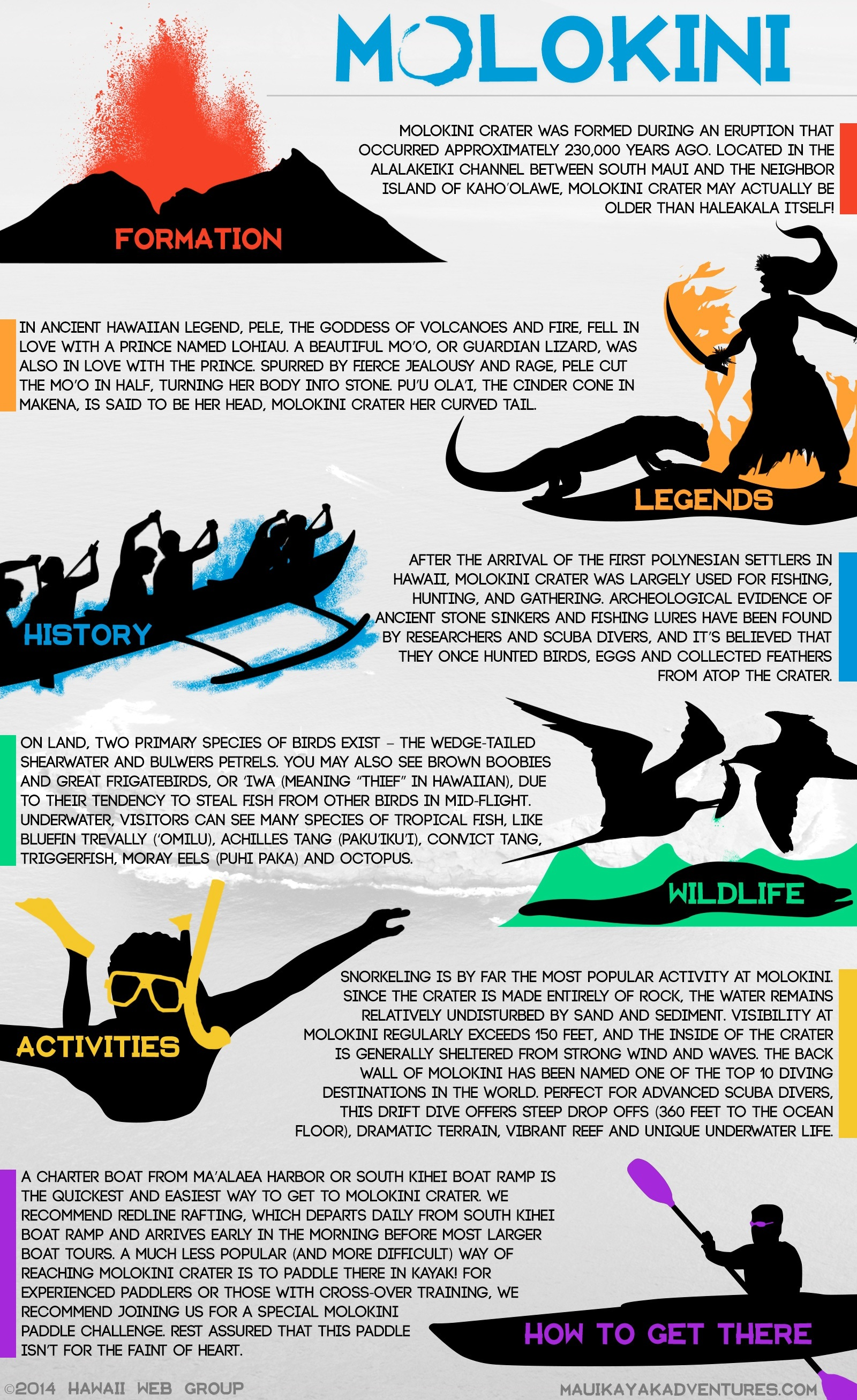 Molokini Infographic