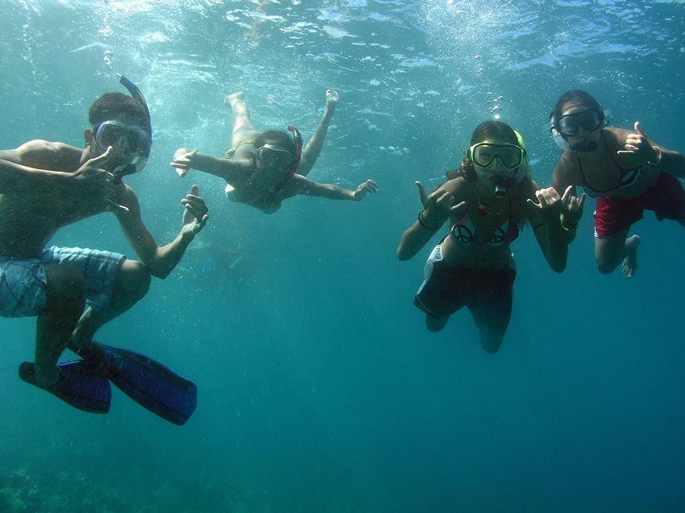 Kayak Olowalu Turtle Garden