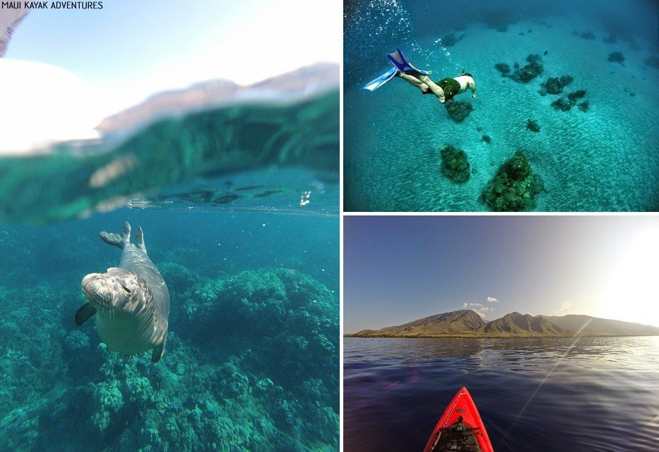 hawaii sustainable tourism